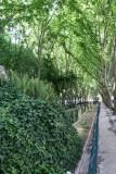 A Stroll Along the Avenida de Liberdade