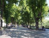 Pushkin Street in Odessa