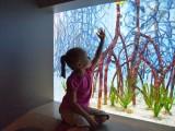 Toledo Zoo and Aquarium