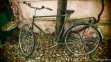 I wanna ride my bicycle...