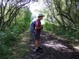 Gowerton walk - 24 Aug 2013