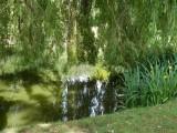 Hatherley Park