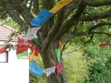 Nepalese flags in Hatherley Park