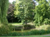 Tranquil lake in Hatherley Park