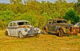 Roadside Vehicles
