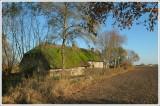 Nature & Rural life  2007