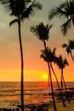 Hawaii Snapshots