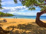 A Beach Park