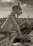 Gargoyle, Notre Dame Cathedral