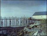 20140105-dock-6.jpg
