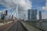 rotterdam-11.jpg