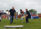 Dog Agility by National Animal Welfare Trust at Low Ham Steam Rally