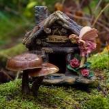MushroomsHouse102216.jpg