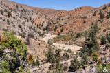 Rattle Snake Canyon.