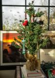 My Xmas tree December 20 2015-02034.jpg