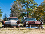 Two 1955 Fords #2