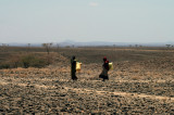 Gabbra women going to fetch water, Northern Frontier District, Kenya