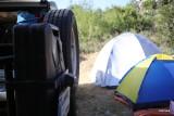 ALES Camp June 2014