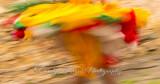 Swirling Bhutanese Dancer