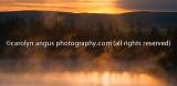IMGP5298-Edit.jpg