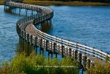 Snaking Bridge