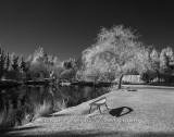 Deserted_Benches.jpg