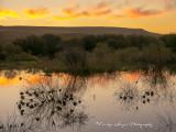 Sunseting_Behind_Marsh