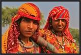 Gypsies - Shekawati.