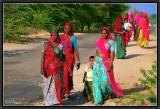 On the road to Jojawar.