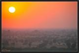 Setting Sun on Savanna. Khejerla.
