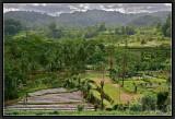 The Region of Sidemen. South-East Bali.