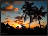Sunset. Tuban.