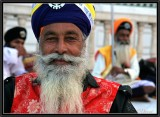 A Sikh Dressed up for a Ceremony. Delhi.