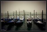 Winter in Venice.