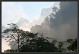 Estampe Laotienne.