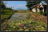Villa Santi. Luang Prabang.
