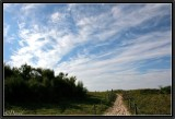 The Path to the Cirrus Highway.