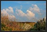 Runaway Clouds.