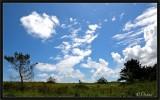 Any Cloud You Like...