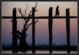 U-Bein Teak Bridge at Dusk.
