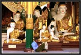 Reading (II). Shwedagon.
