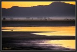 Sunset on Irrawady Banks.