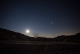 Desert Moon, San Diego County, California