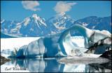 Knik glacier ice arch.