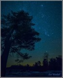 Lone Pine  Orion