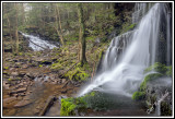 Pa Wilds WaterWorld Environment