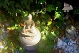 Long island Buddha hunkering down for a cold winter