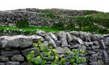 The walls of Inisheer Island