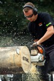Stihl Timbersports Benelux Kampioenschap 2014