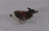 snow 12-6-13 008.jpg